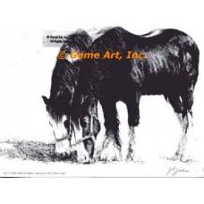 Horse  - EOR1  -  PRINT
