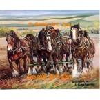 Six Horses Pulling  - #ZOR901  -  PRINT