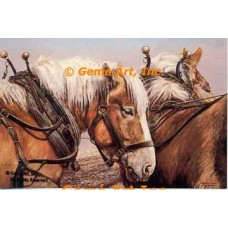 Horses  - ZOR903  -  PRINT