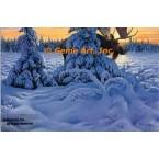 Moose In Snow  - #ROR905  -  PRINT