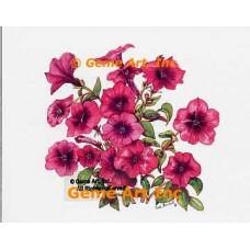 Purple Petunias  - WOR121  -  PRINT