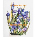 Purple Irises  - WOR132  -  PRINT