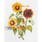 Mixed Sunflowers & Black-Eyed Susans  - WOR145  -  PRINT