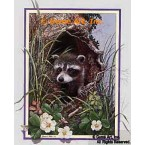 Raccoon  - ROR106  -  PRINT