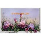 Lavender & Purple Iris  - ROR136  -  PRINT
