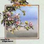 Apple Blossoms  - ROR161  -  PRINT