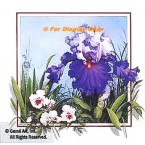 Lavender/Purple Iris with Pansies  - ROR175  -  PRINT