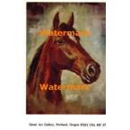 Horse  - #MPOR27  -  PRINT