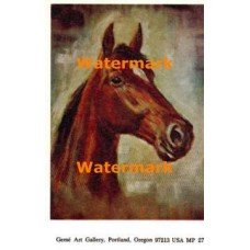 Horse  - MPOR27  -  PRINT