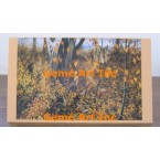 Autumn Wolf Note Card  - #CardRH904  -  NOTE CARD