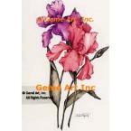 Pink & Lavender Iris  - ZOR806  -  PRINT
