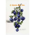 Blueberries  - #ZOR834  -  PRINT