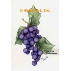 Grapes  - #ZOR837  -  PRINT