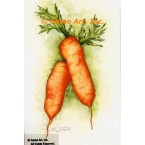 Carrots  - #ZOR838  -  PRINT