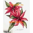 Poinsettia  - #ZOR849  -  PRINT