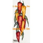 Yellow & Red Peppers  - ZOR857  -  PRINT