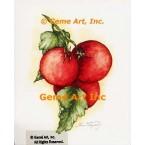 Tomatoes  - #ZOR865  -  PRINT