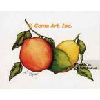 Citrus Fruit  - #ZOR890  -  PRINT