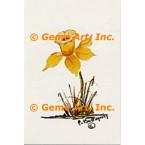 Yellow Daffodil  - POR116  -  PRINT
