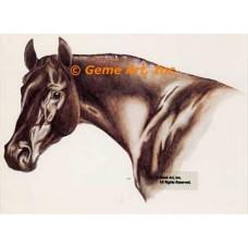 Horse  - HOR1  -  PRINT