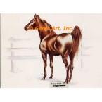 Horse  - HOR2  -  PRINT