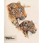 Leopards  - #MOR909  -  PRINT