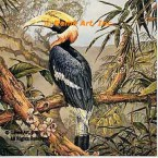 Great Hornbill  - #MOR903  -  PRINT