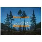 Postcard  - #PC394  -  POSTCARD