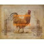Rustic Fowl I  - #XXKH11240  -  PRINT