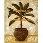 Potted Palm I  - #XXKL10319  -  PRINT