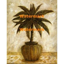 Potted Palm II  - #XXKL10320  -  PRINT