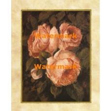 Venetian Roses I  - #XXKL9051  -  PRINT