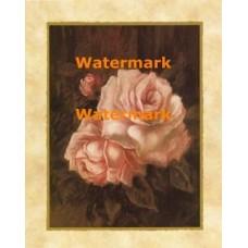 Venetian Roses III  - #XXKL9053  -  PRINT
