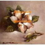 Magnolia Classic  - #XXKP10372  -  PRINT