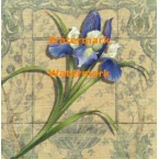 Tile Style III  - #XXKP11012  -  PRINT