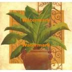Grand Palm II  - #XXKP11341  -  PRINT