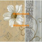 Silver Shimmer II  - #XXKP11359  -  PRINT