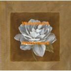 White Chocolate I  -  #XXKP11478  -  PRINT