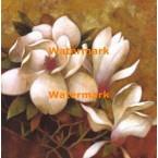 Sweet Magnolia I  - #XXKP12750  -  PRINT