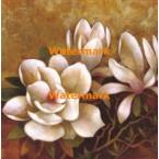 Sweet Magnolia II  - #XXKP12751  -  PRINT