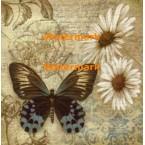 Butterfly Garden I  - #XXKP13090  -  PRINT