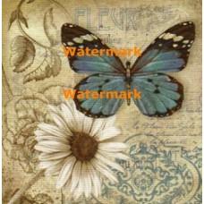 Butterfly Garden II  - #XXKP13091  -  PRINT