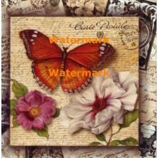 Sweet Nectar I  - #XXKP13465 -  PRINT