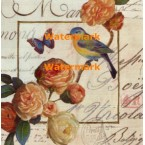 Jardin De Papillons II  - #XXKP13481 -  PRINT