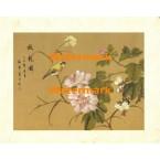 Peony Blossom I  - #XXKL6378  -  PRINT