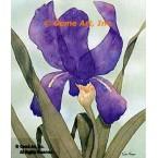 Purple Iris  - #MOR803  -  PRINT