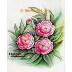 Pink Roses  - #SOR108  -  PRINT