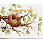 Bird Nest  - #SOR120  -  PRINT