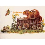 Wildlife  - #SOR15  -  PRINT
