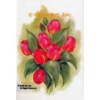 Tulips  - #SOR48  -  PRINT